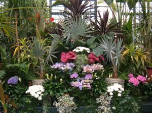 Biltmore Indoor Garden