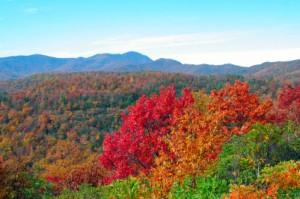 NC Fall Foliage 2013