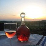 Muscadine Heritage Wine Trail