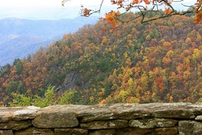 NC Fall Foliage Reports and Updates